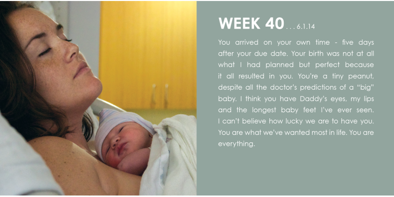 Week Forty